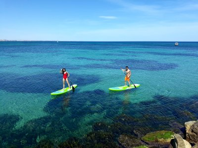Jaws School Paddle Surf