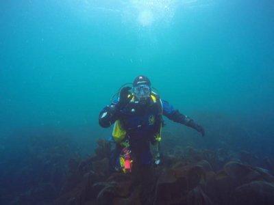 Lutterworth Sub Aqua Club