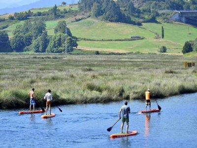 Alma Surf School Paddle Surf