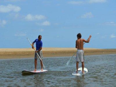 Paddle Surf Baptism at Delta del Ebro, 1 hour