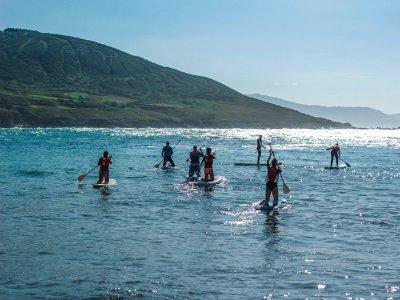 Náutica Golfiño Paddle Surf