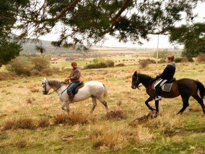 Horse riding at La Granja de S. Ildefonso - 1h 30m