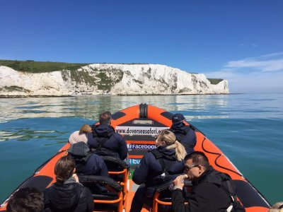 Dover Sea Safari
