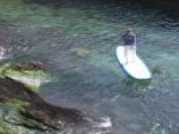 Paddleboarding tours in Devon.