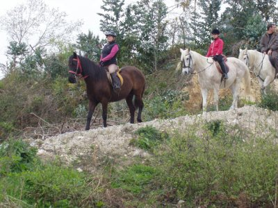Horse riding through Santa Ana Mountain, 3 hours.