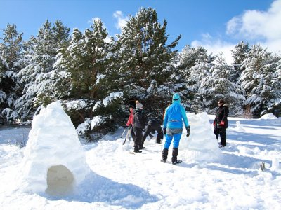 Learn to Build an Igloo in Valle de Tena