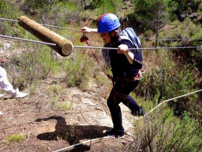 Treetop adventure course, half a day