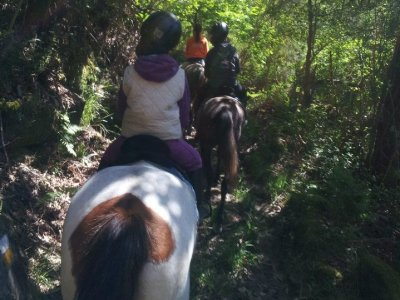 2 km horse ride through Marín.