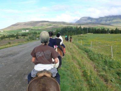 Horseback riding around Elche, 1 hour