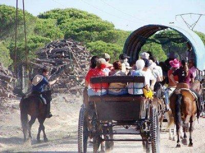 Pilgrimage on horseback in the heart of Doñana