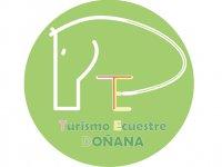Turismo Ecuestre Doñana Clases de Equitación