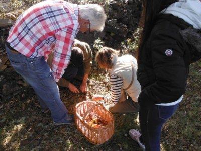 Mycology tour + Tasting + Photos, El Rebollar