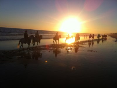 Romantic getaway virgin beaches of Doñana