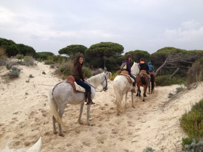 Doñana Horse Riding and 4x4 Route, Getaway Groups