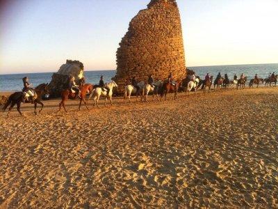 Getaway Doñana and Aldea Rocío, Horses and 4x4