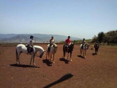 45 minutes horseback riding tesr for children