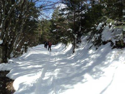 Snowshoes Route, half a day, Biescas