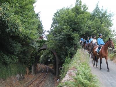 Horse riding Farm tour for kids 50 min
