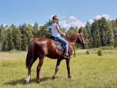 Horse Riding at Night, Luar, Cava+Accomodation