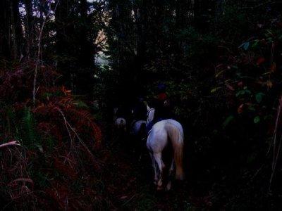 Night horseback route and rural night Cal da Loba