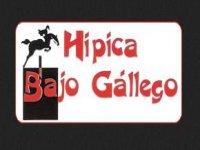 Hípica Bajo Gallego