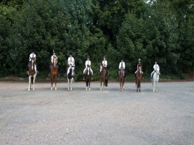 One hour Riding group Lesson in Walsall