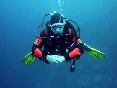 Brighton Diver  Diving