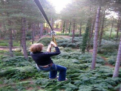 Go Ape Moors Valley Canopy
