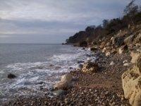 The rugged coast