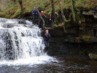 tree jump gorge walk