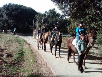 1h Horse riding through Pla de Martís