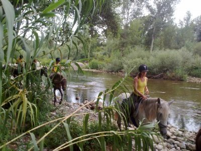 2h Horse Riding Excursion in Ser River Valley