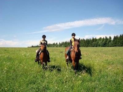 Special couples: Horse riding tour + Hotel hosting