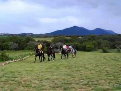 Horse Riding Lesson and Horseback tour Serinya 1 h