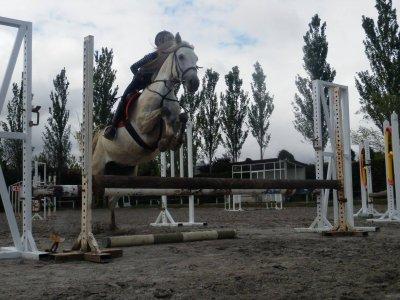 English and Equestrian Camp, Añézcar, 12 days