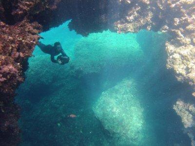 Snorkeling excursion Cova des Pardals 2 hrs