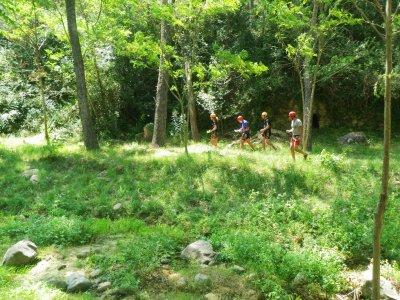 Orientation race in the Sierra de Espadán