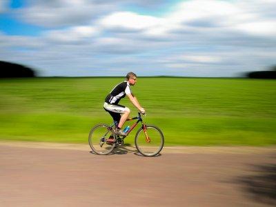 Wellow Trekking Centre Mountain Biking