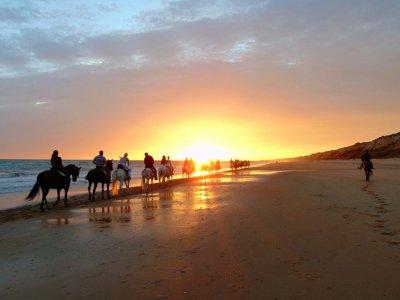 Romatic horse riding + Rebujito Doñana 2h