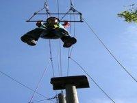 Trapeze swings
