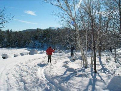 Aventur Raquetas de Nieve