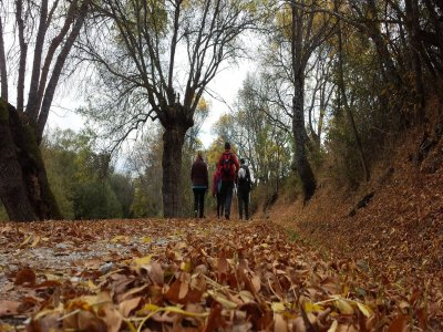 Adventure Activity of Your Choice in Lozoya, 3h