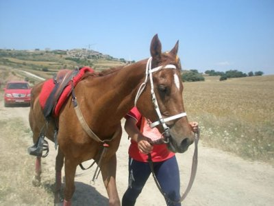 Horseback tour in Sierra Moncayo + lodge