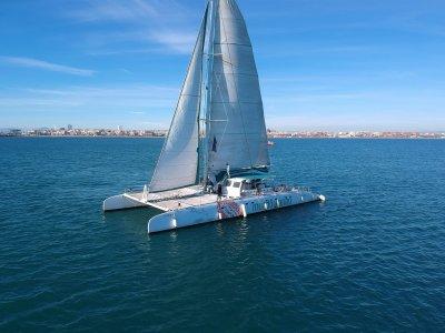 5-hour catamaran trip in Altea