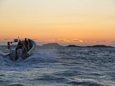 Solent Boat Charters