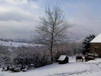 We are open all year round in Five Saints Riding Centre