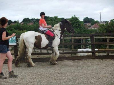 Millfield Riding School