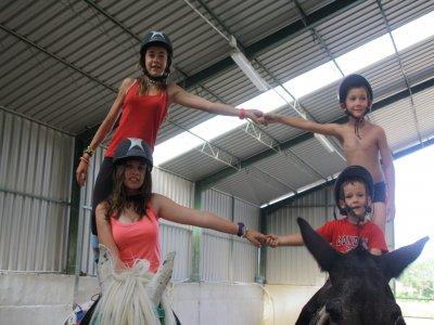 Overnight equestrian camp in Novallas, 1 week