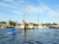 Kayaking in the marina