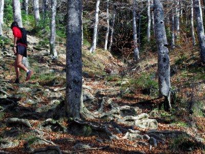 Run Pirineos Senderismo